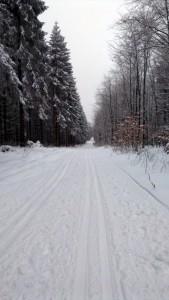 In de omgeving van Ahrdorf: loipen nabij Udenbreth