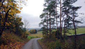 foto herfstkleuren weg naar vakantiehuis