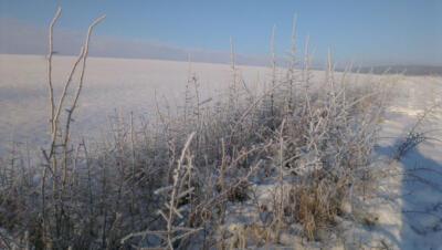 9a - winter