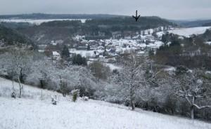 Ahrdorf in de winter, huisje bij pijl in bos